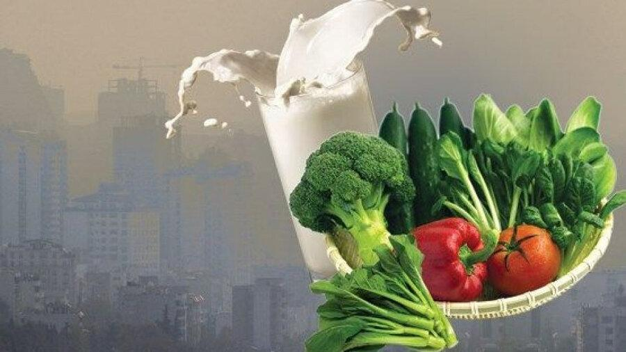 چگونه با یاری تغذیه در برابر آلودگی هوا از خود محافظت کنیم؟