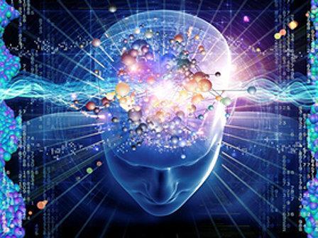 12 نشست تخصصی در حوزه علوم شناختی برگزار می گردد