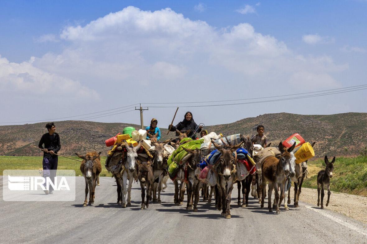 خبرنگاران مصائب کوچ عشایر شیروان به مناطق قشلاقی