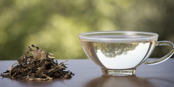 تاثیر عجیب این 7 چای گیاهی در مبارزه با عفونت های ویروسی